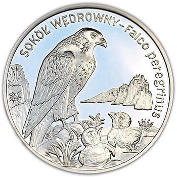 2008 Falcon Silver Proof - 1